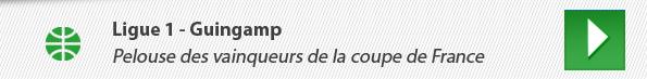 Ligue 1 - Guingamp : Pelouse des vainqueurs de la coupe de France
