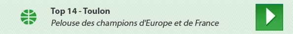 Top 14 - Toulon : Pelouse des champions d'Europe et de France